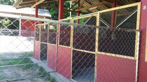 Ila's World Dog Hotel - Large Kennels