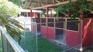 Ila's World Dog Hotel - Small Kennels